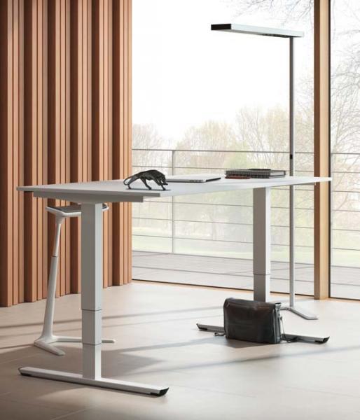 Tisch Palmberg 1600x800 mm, T-Fuß, elektromotorisch (Betrag entspricht 800 € / brutto, Förderung möglich z.B. Rentenversicherung)